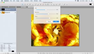 Free Mac Apps for Graphic Designers