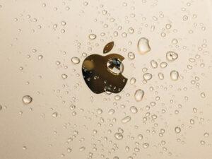 iphone xr waterproof