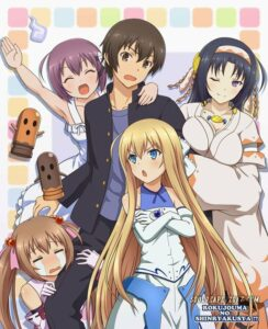 best harem anime
